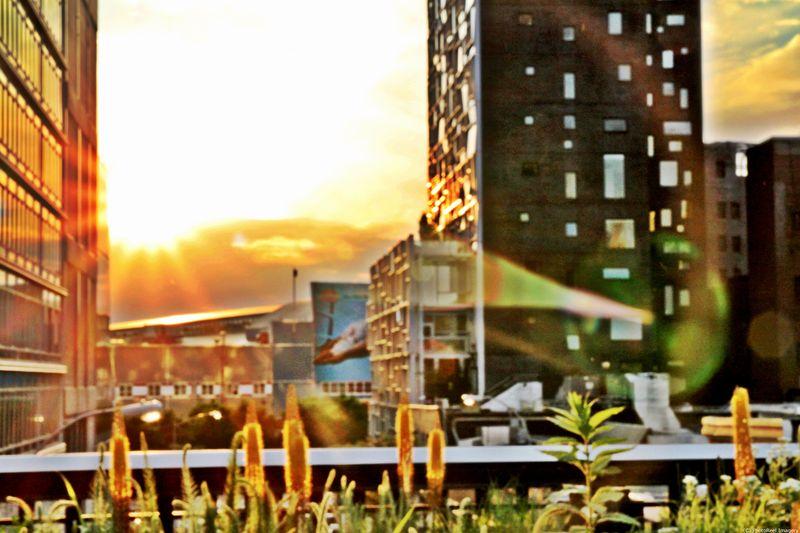Sunset_052512